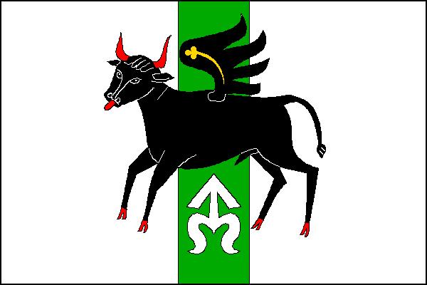 Vlajka Ocmanic