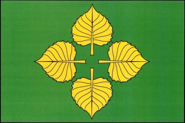 Vlajka Knyku