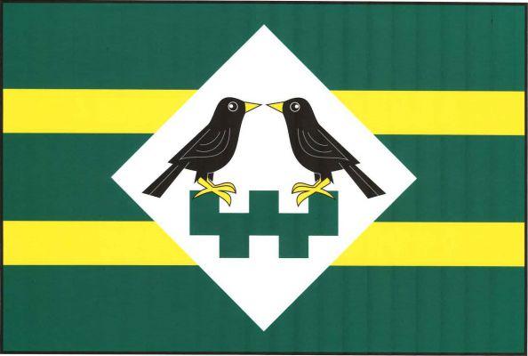 Vlajka Mezilesí