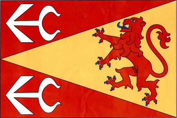 Vlajka Těmic