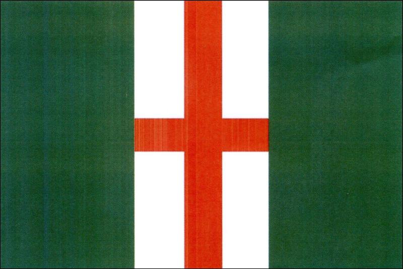 Vlajka Věžné