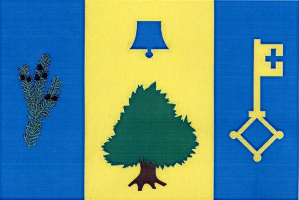 Vlajka Vilémovic