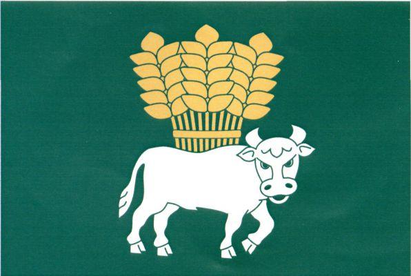 Vlajka Suché