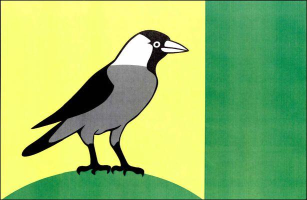 Vlajka Sazomína
