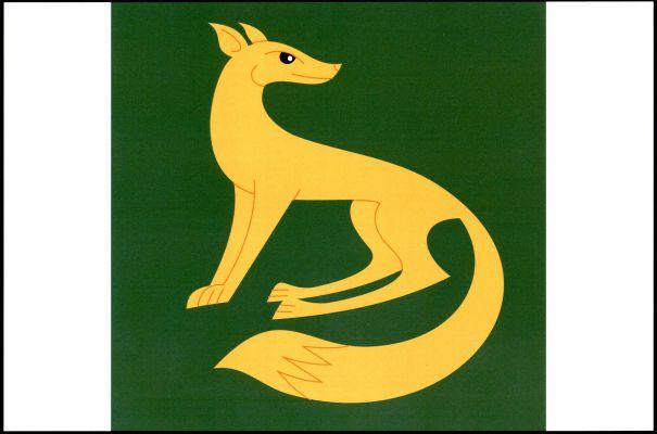 Vlajka Vícenic