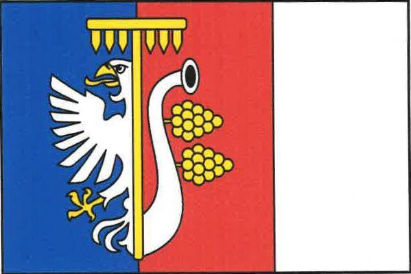Vlajka Kojetic