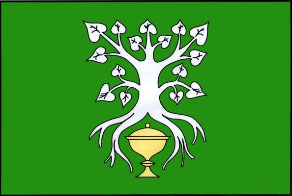 Vlajka Šebkovic