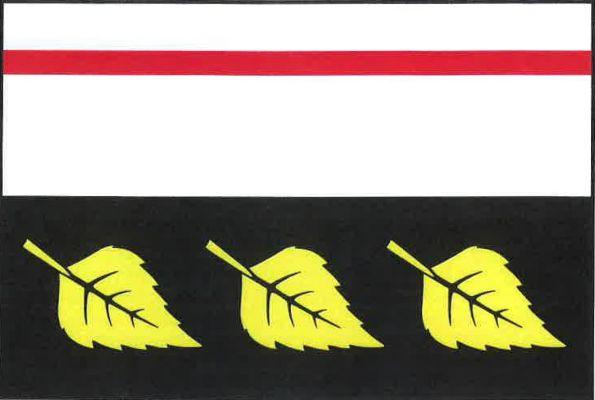 Vlajka Březského