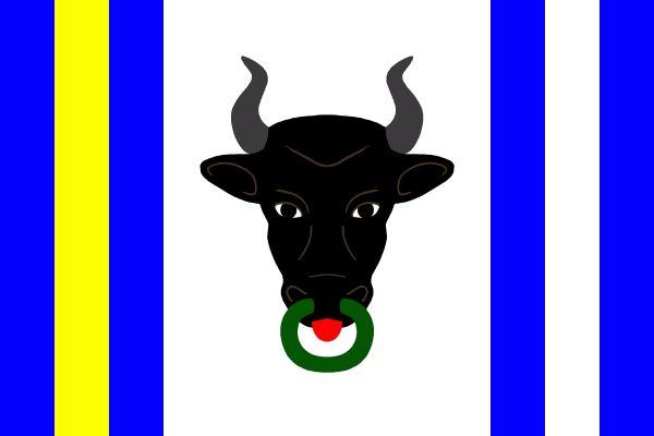Vlajka Koroužného
