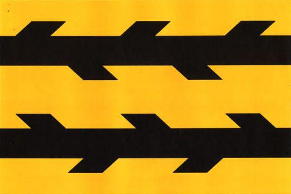 Vlajka Kotlas