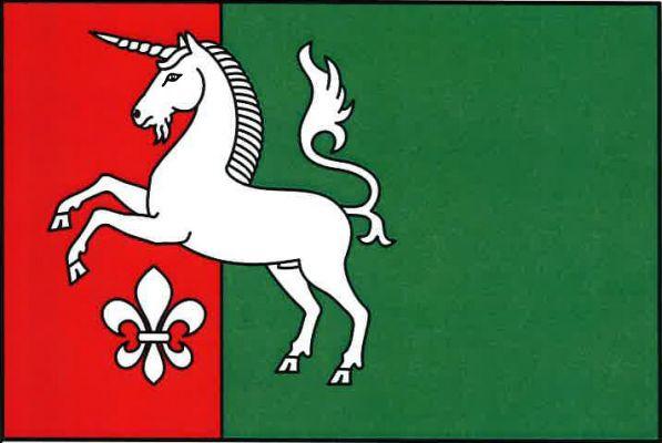 Vlajka Radenic