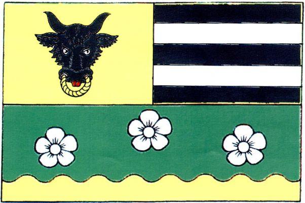 Vlajka Strachujova