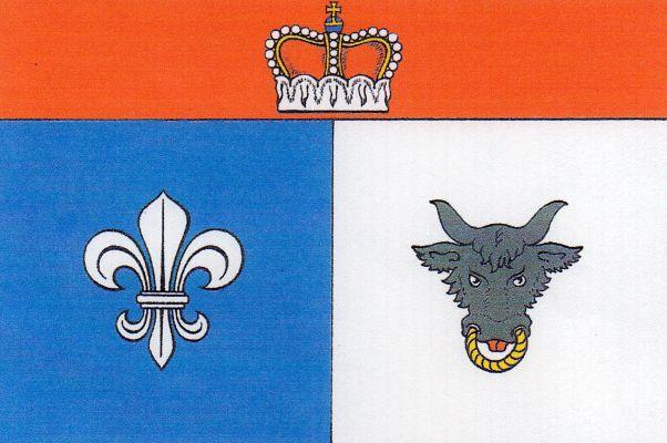 Vlajka Velkých Janovic